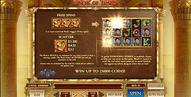 Book of the Dead is a great video slot